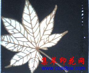 北京彩美供应《龟裂浆》