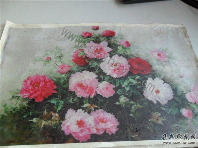 深圳手袋数码印花机/彩色印花设备