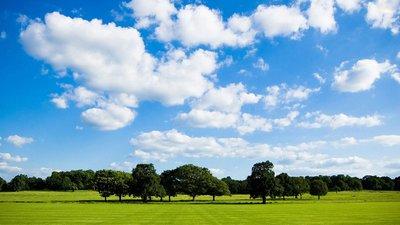 藍天白云是我們的宗旨