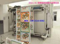 DGS型数码印花后长环蒸化机