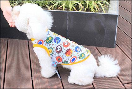 宠物装小狗装个性数码印花