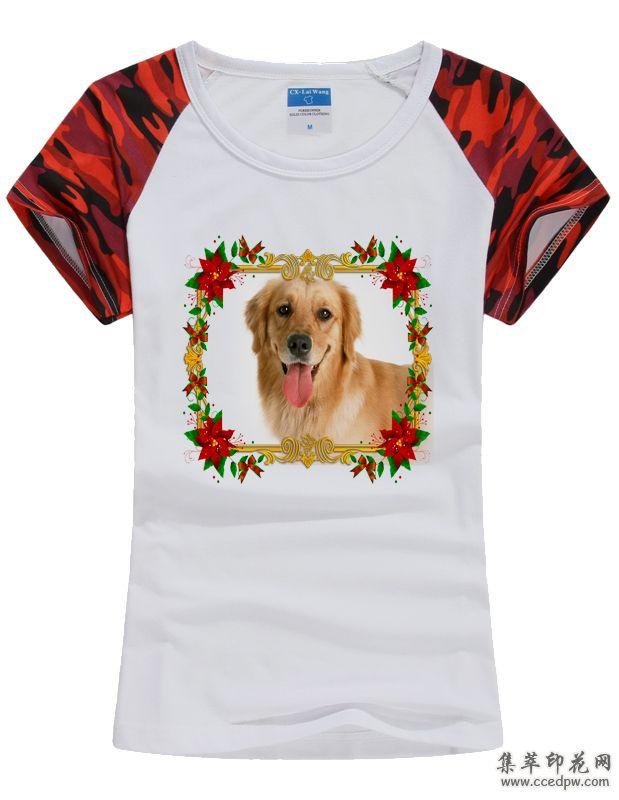 萌宠印花T恤 宠物T恤定制 动物图像T恤 宠物协会T恤